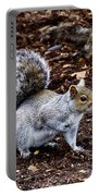 Squirrel In The Park-boston  V6 Portable Battery Charger