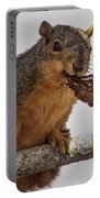 Squirrel Lunch Time Portable Battery Charger