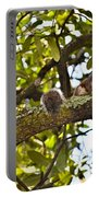 Squirrel On A Branch Portable Battery Charger