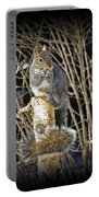 Squirrel On Birch Post Portable Battery Charger
