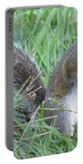 Squirrel On The Grass Portable Battery Charger