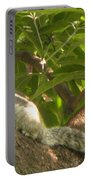 Squirrel On The Tree Portable Battery Charger