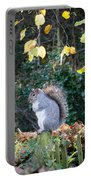 Squirrel Perched Portable Battery Charger