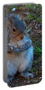 Squirrel Seeds Portable Battery Charger