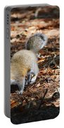Squirrel Time Portable Battery Charger