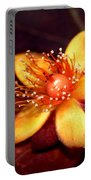 St. Johns Wort Portable Battery Charger