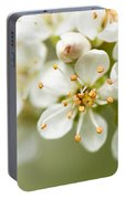 St Lucie Cherry Blossom Portable Battery Charger