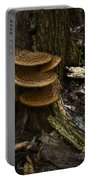 Stack Of Fungi Portable Battery Charger