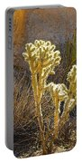 Staghorn Cholla Cactus Catching Sunlight In Joshua Tree Np-ca Portable Battery Charger