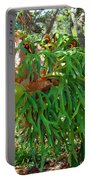 Staghorn Fern Portable Battery Charger