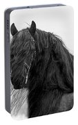 Stallion Beauty Portable Battery Charger