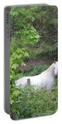 Stallion On Independence Day Portable Battery Charger