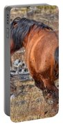 Stallions Gone Crazy Portable Battery Charger