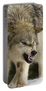Stand Off Portable Battery Charger