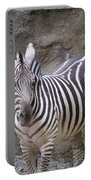 Standalone Zebra Portable Battery Charger