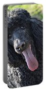 Standard Poodle Portable Battery Charger