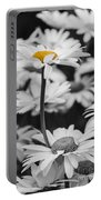 Standing Out From The Crowd 2 Portable Battery Charger