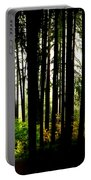 Stanley Park Triptych Right Portable Battery Charger