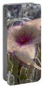 Stapelia Hirsuta Flower-oahu Hawaii Portable Battery Charger