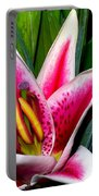 Star Gazer Lily Portable Battery Charger