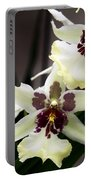 Star Orchids Portable Battery Charger