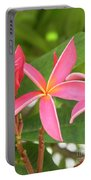 Starburst Plumeria Portable Battery Charger