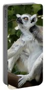 Lemur Stare Portable Battery Charger