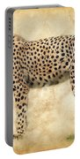 Stare Of The Cheetah Portable Battery Charger
