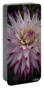 Fireworks Dahlia Portable Battery Charger
