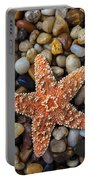 Starfish On Rocks Portable Battery Charger