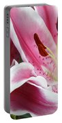 Stargazer Lily Flowers Closeup Portable Battery Charger