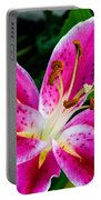 Stargazer Oriental Lily Portable Battery Charger