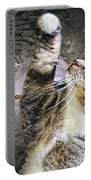 Starry Night Kitty Style - Featured  In Comfortable Art Group Portable Battery Charger
