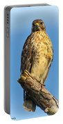 Stately Red-shouldered Hawk Portable Battery Charger