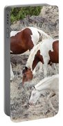 Steens Wild Paints Portable Battery Charger