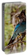 Stellar Jay Portable Battery Charger by Bill Gallagher
