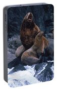 Stellar Sea Lions On The Rocks Portable Battery Charger