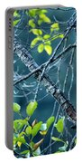 Steller's Jay In A Tree Portable Battery Charger