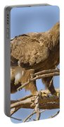 Steppe Eagle Aquila Nipalensis 2 Portable Battery Charger