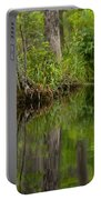 Stillness Swamp Portable Battery Charger
