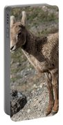 Stone Lamb Portable Battery Charger