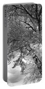 Storm Over The Cottonwood Trees - Black And White Portable Battery Charger