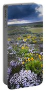 Storm Over Wildflowers Portable Battery Charger
