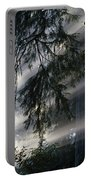 Stout Grove Redwoods With Sunrays Breaking Through Fog Portable Battery Charger