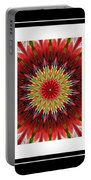 Strawberry Explosion Triptych - Kaleidoscope Portable Battery Charger