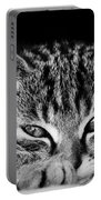 Stray Kitten Portable Battery Charger