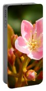 Street Flower Portable Battery Charger