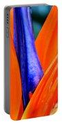 Strelitzia Colour Portable Battery Charger