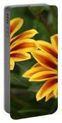 Striped Gazania Portable Battery Charger