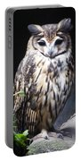 Striped Owl Portable Battery Charger